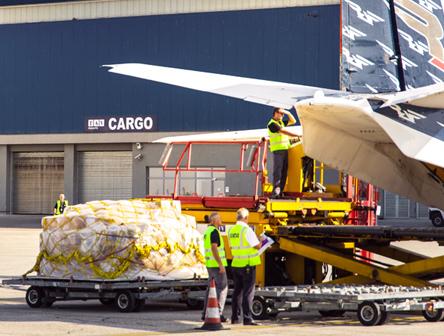 Cargo / Cargo Terminal